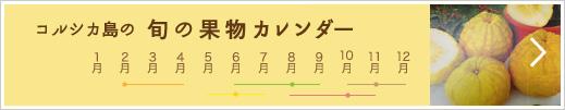 果物 フルーツ収穫カレンダー