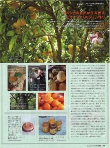0706ryori_tsushin-002